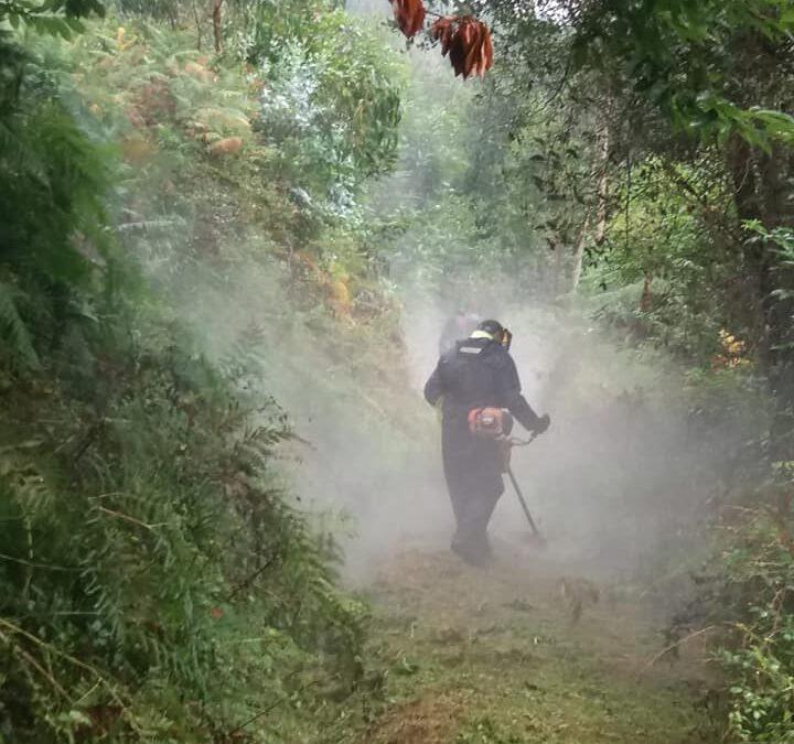 Vedelar, adjudicataria del contrato de limpieza y conservación de caminos de Avilés